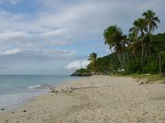 Antigua hat einsame Traumstrände
